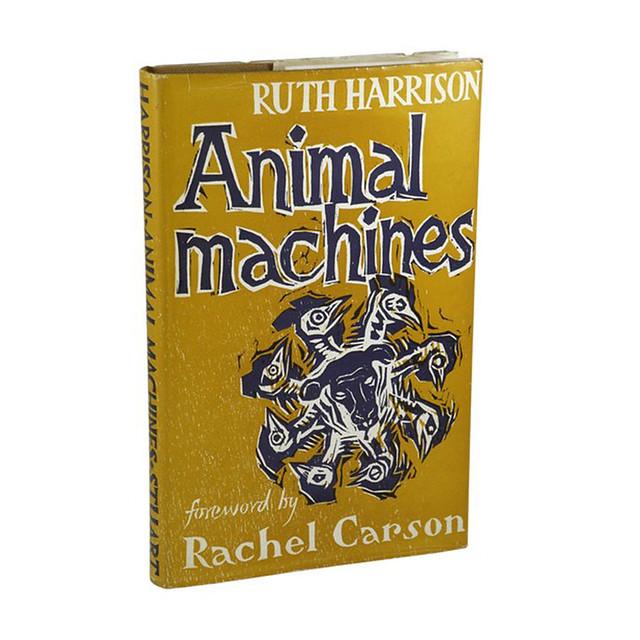 Animal Machines Square no logo