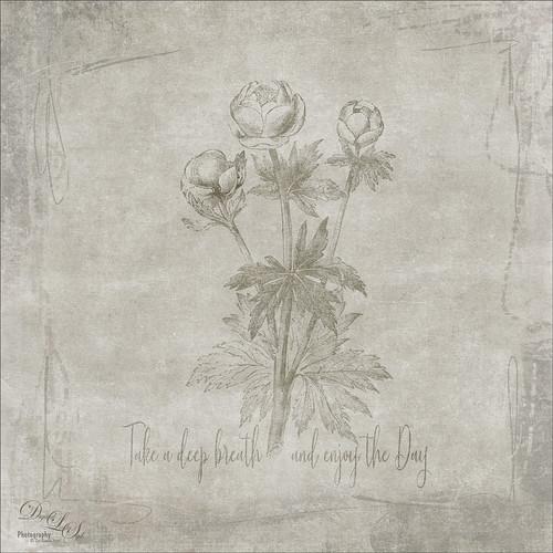 Digital Art of some flowers
