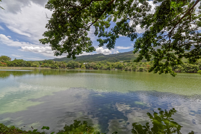 Ang Kaew Reservoir (14 sur 121)