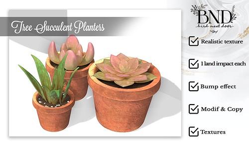 [BND] Succulent Planters Set - Freebies