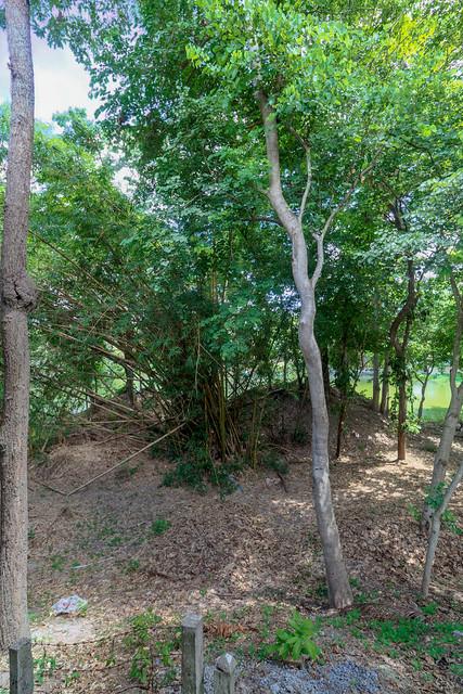 Ang Kaew Reservoir (92 sur 121)