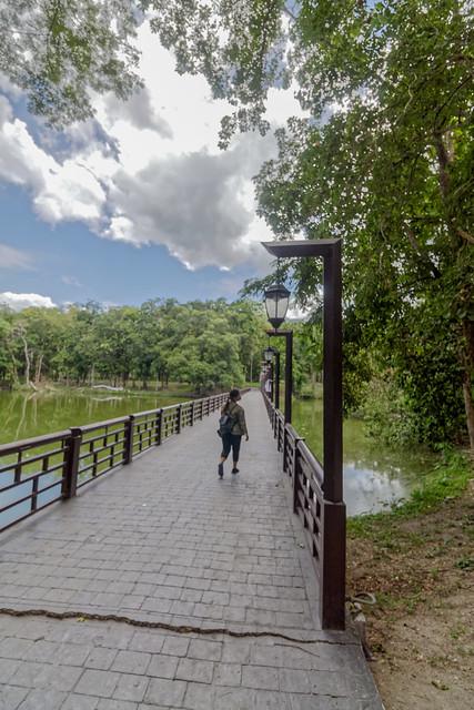 Ang Kaew Reservoir (42 sur 121)