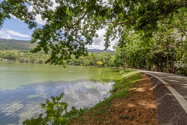 Ang Kaew Reservoir (17 sur 121)