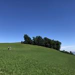 2020-06-12 Chutzen_Fred (24)