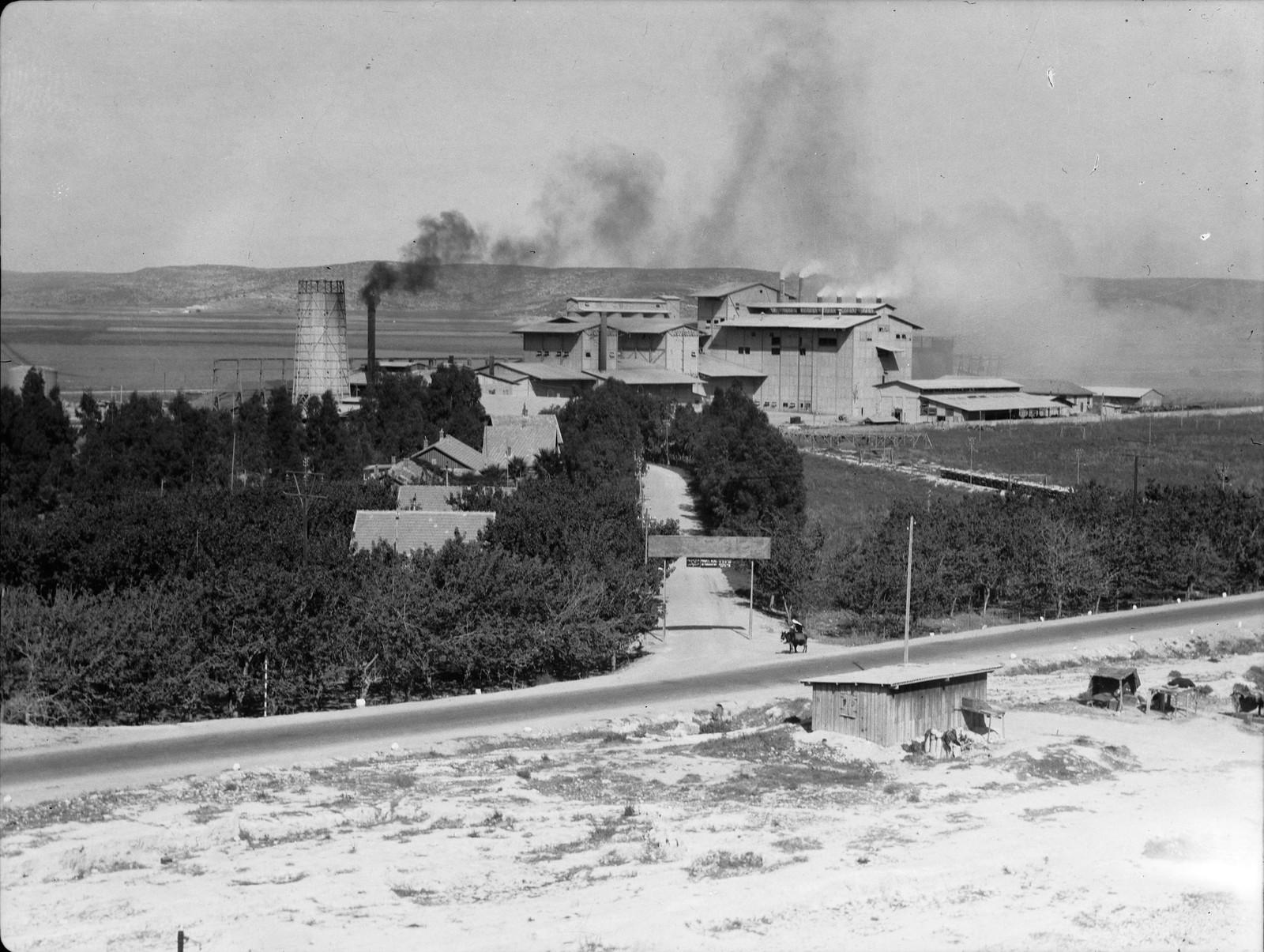Цементный завод в Нешере