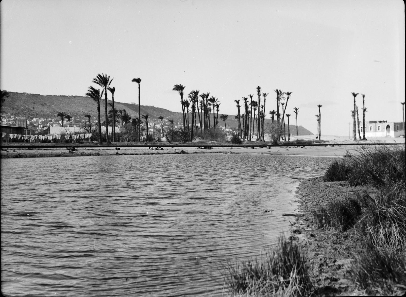 Вид на город и гору Кармель из гавани