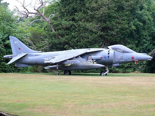 ZG509 Harrier Liss 12-06-20
