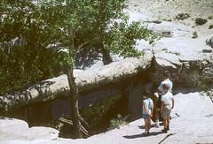 Robbie, Chuck, Buddy Agate Bridge Petrified Forest National Monument AZ August 1962.jpg