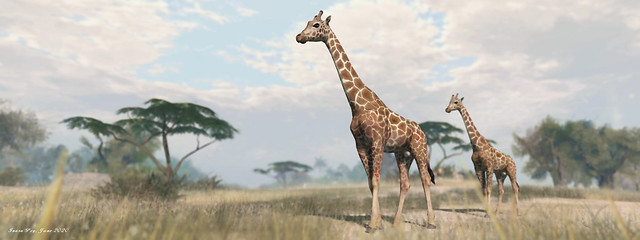 Jambo: A Voyage to Africa - June 2020