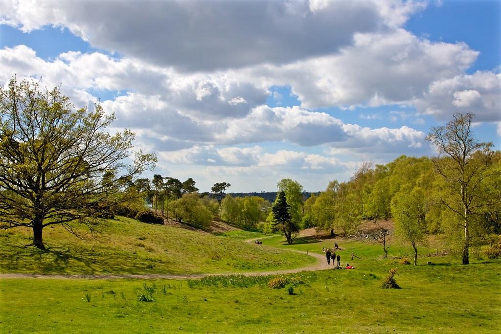 Sutton Hoo - Suffolk - April 2014
