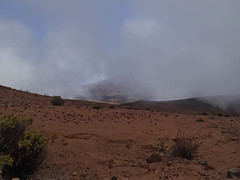 Sliding Sands Trail