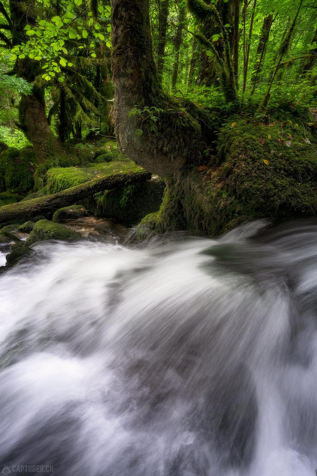 River flow - Gorges du Pichoux