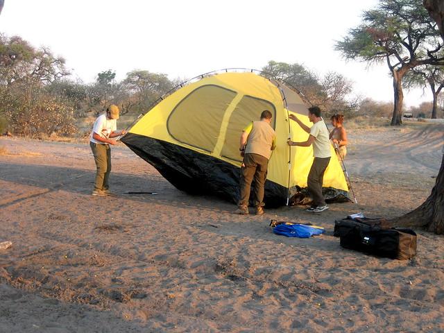 Botswana_Savuti_vita_da_campeggio_montaggio-tende