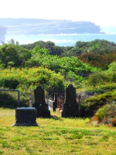 coasthospitalcemetery laperouse sydney view vista coast grave graveyard tombstone burial