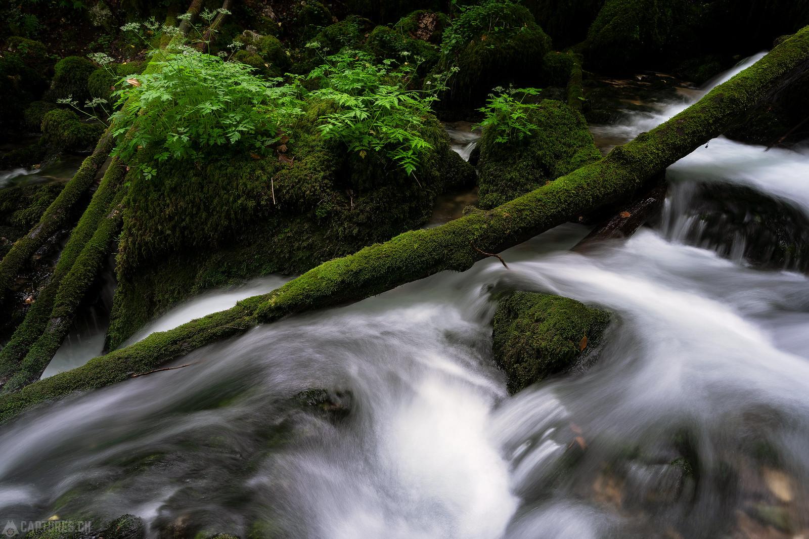 River - Gorges du Pichoux