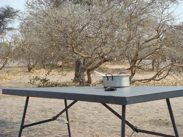 Botswana_Savuti_vita_da_campeggio_tavolo