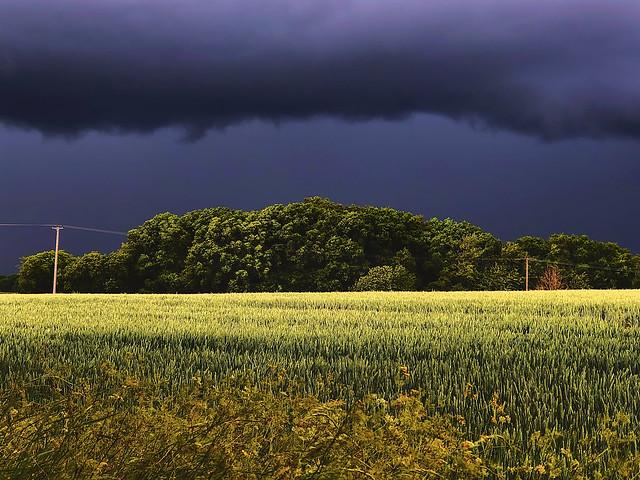 Ominous clouds; my daily lockdown walk