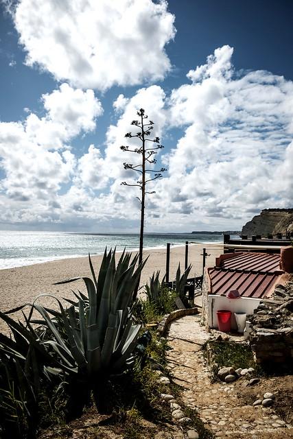 Algarve_2020_20