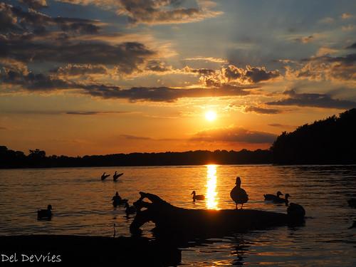 oldhickorylake shutesbranch tennessee sunset oldhickory unitedstatesofamerica