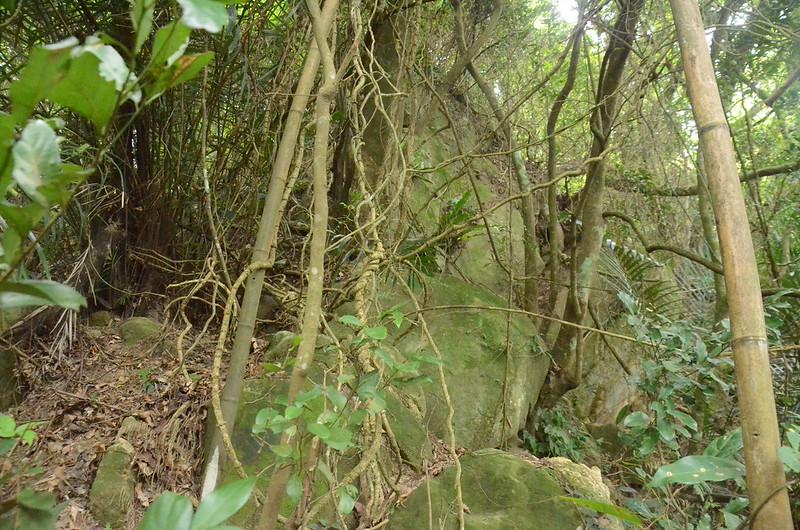 東坑山南峰登頂前大石壁