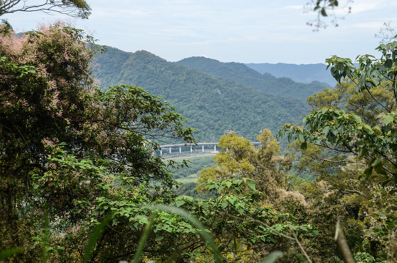 東坑山南峰山徑俯瞰72快速道路 2