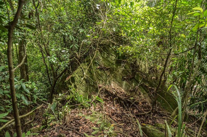 東坑山南峰山徑上巨岩路段