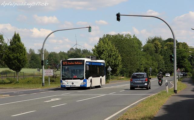 Bunte Buswelt - Bergheim (Erft)
