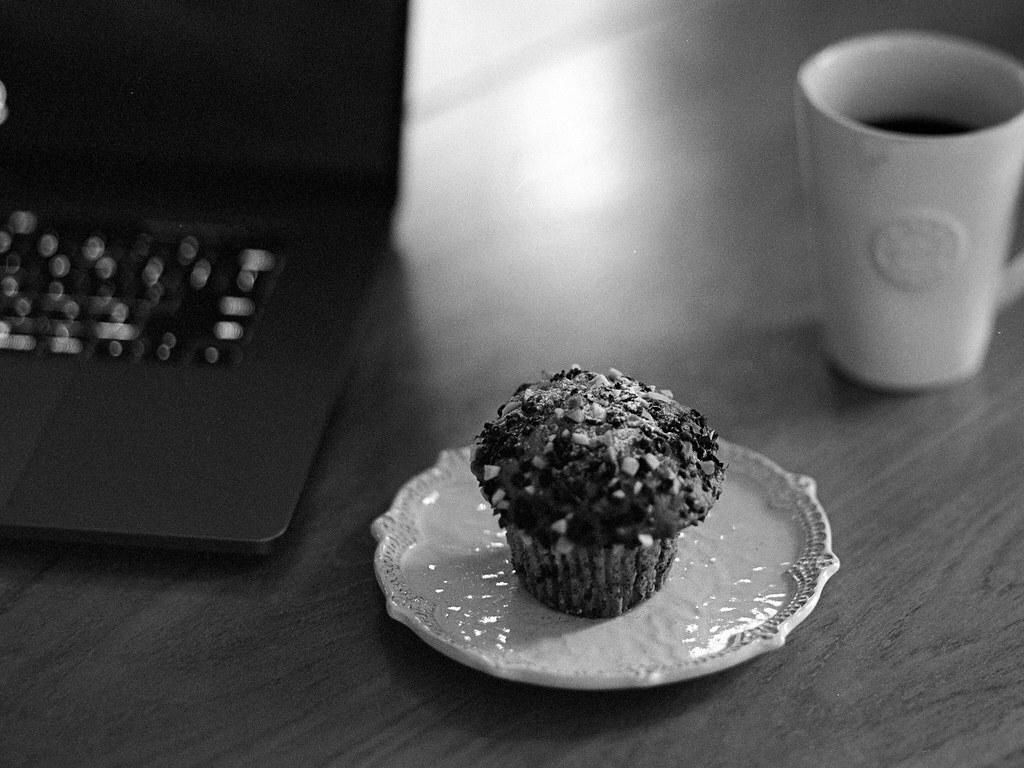 chocolate mint chip cupcake