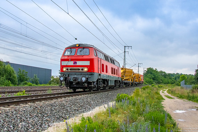 225 101 (Joseph Hubert) mit kurzem Bauzug   11.06.2020   Nürnberg Hohe Marter