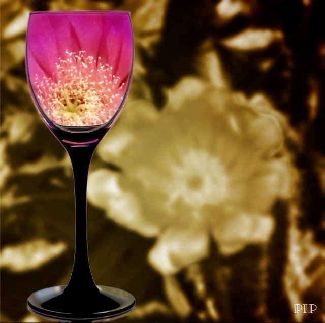 Cactus Flower In A Wineglass with Sepia Background Filter