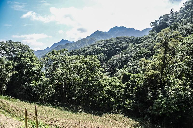 三份山東北遠眺仙山、大窩山、上大窩山稜線 (1)