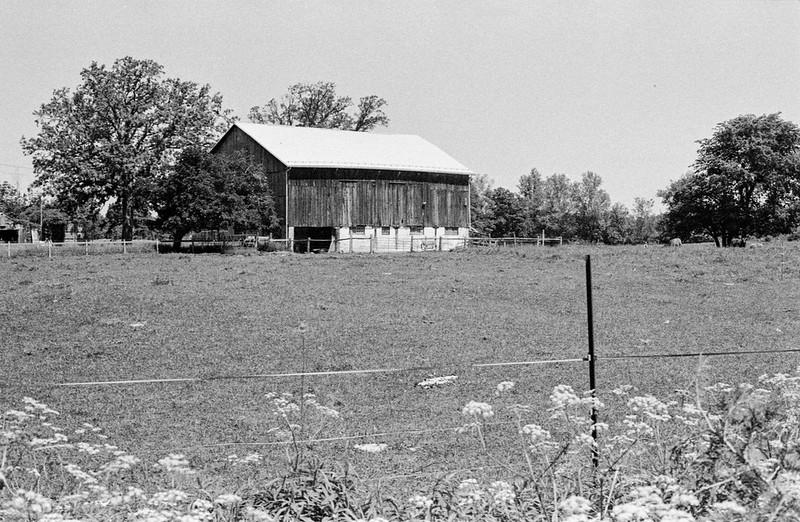 Another Halton Hills Barn