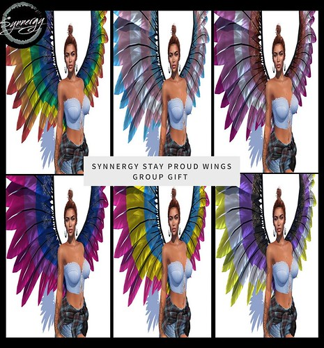 Proud Wings - Group Gift