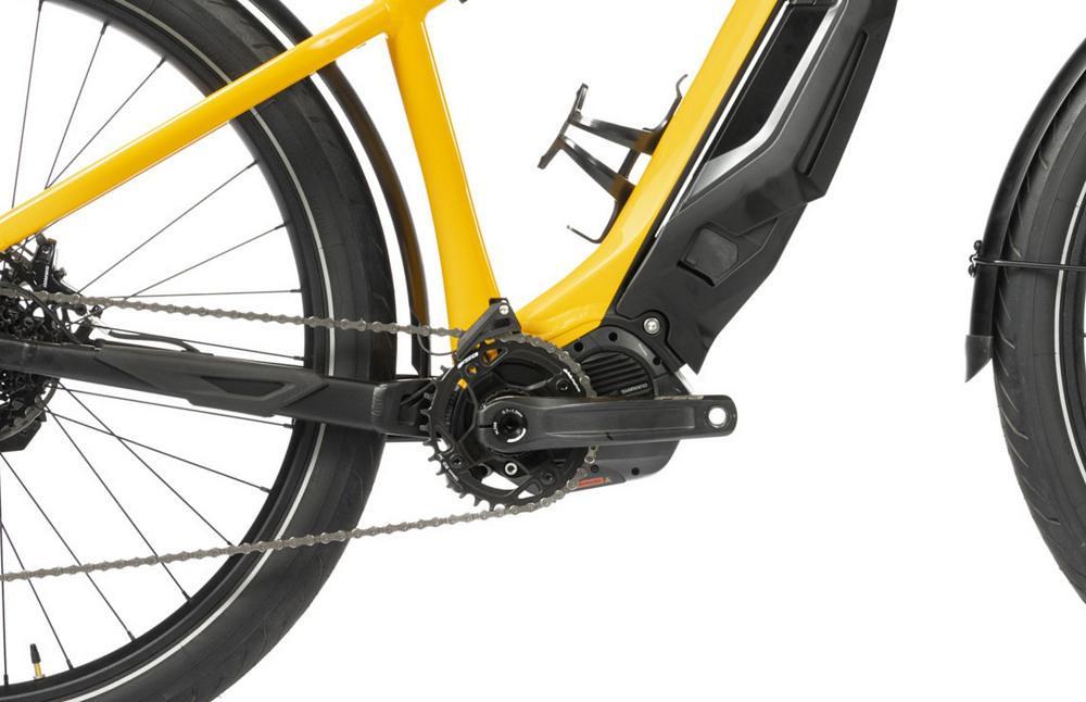 Ducati e-Scrambler Motor