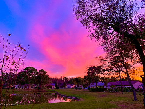 clouds fl florida newportrichey outdoor pond sky sunset trees trip water