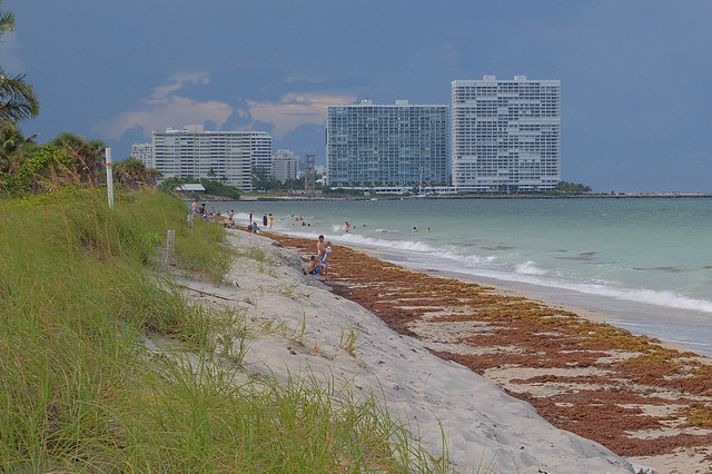 Fort Lauderdale FL Skyline Photo from Did you mean: von mises  Search Results Web results  Dr. Von D. Mizell-Eula Johnson State Park in Dania Beach, Florida