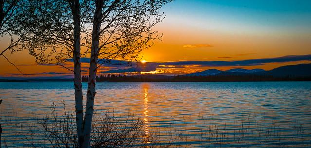 Lovely Lapland, midnight lights