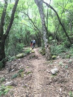 Travaux sur le sentier U Chjassu di I Carbunari supranu