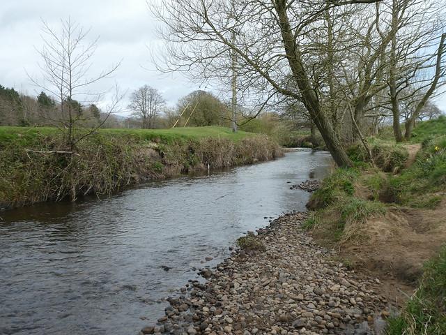 Catterall - River Calder 200402 3