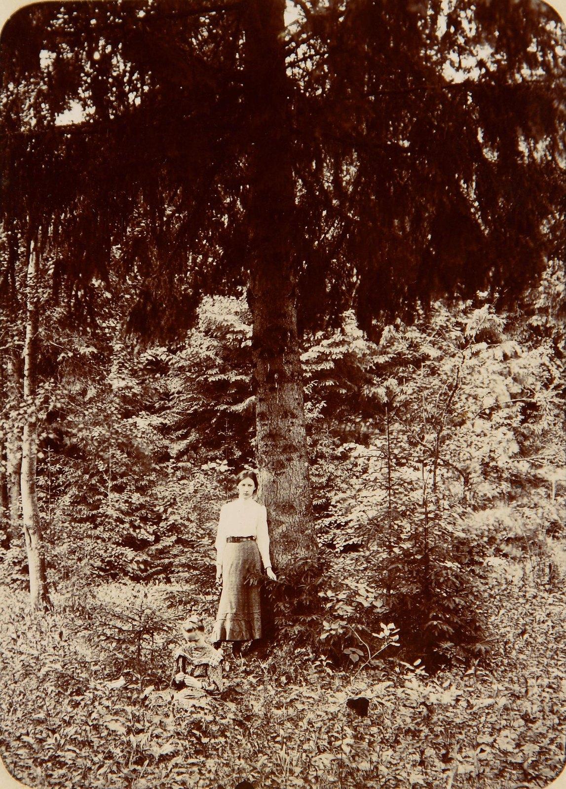 Женщина под елью в парке