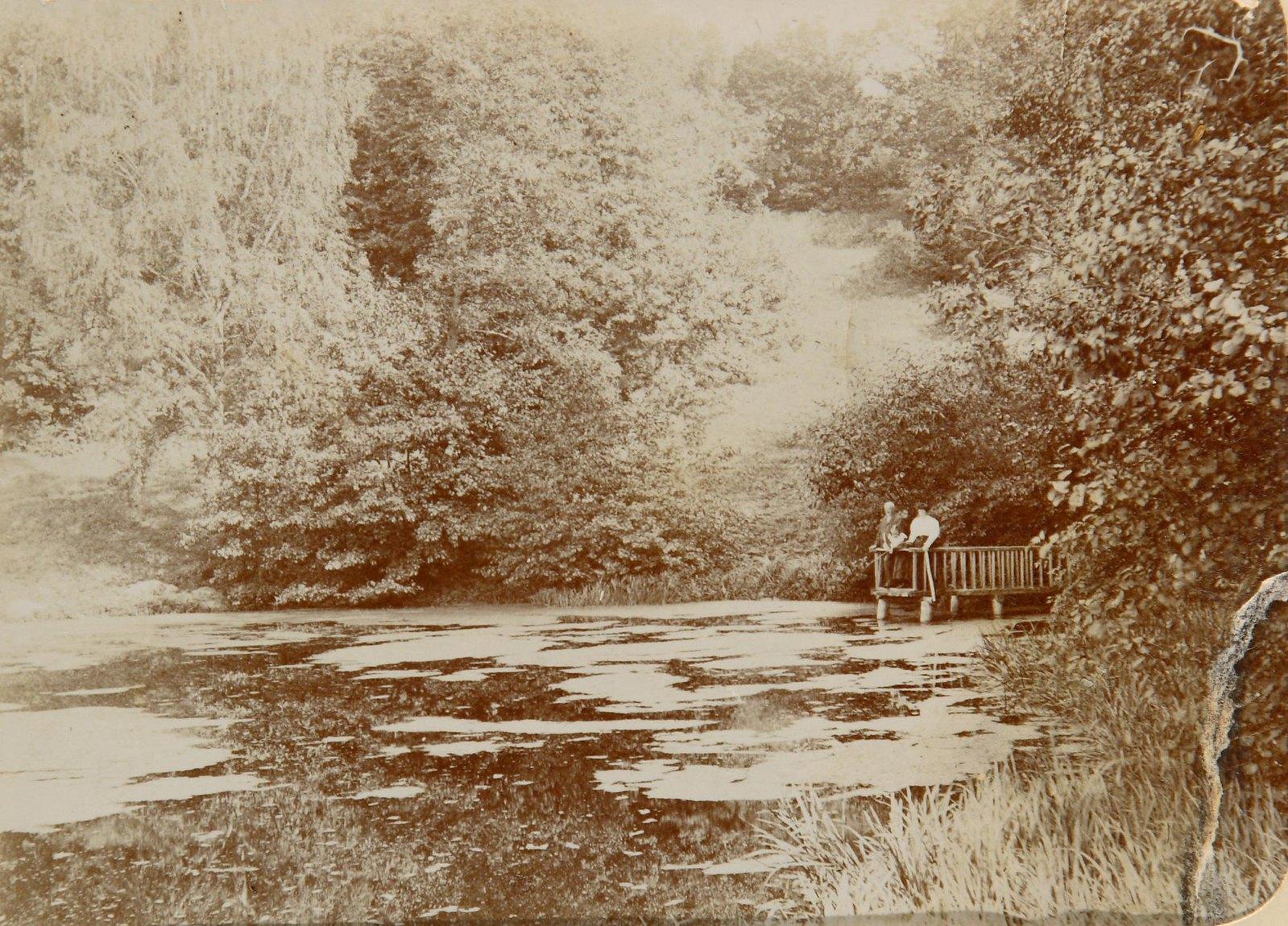 Группа на мостках у заросшего пруда