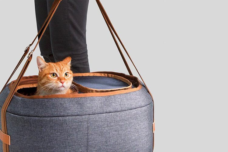 choosing a proper carrier for your pet