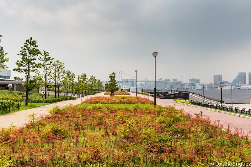 Vistas desde el parque Toyosu Guri
