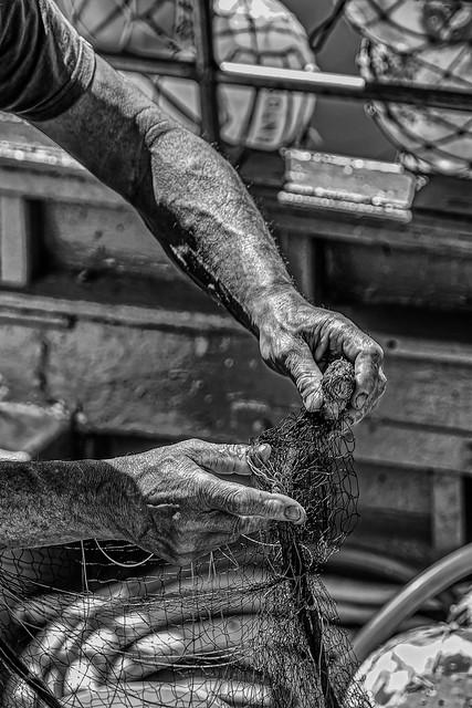 Hands in the net