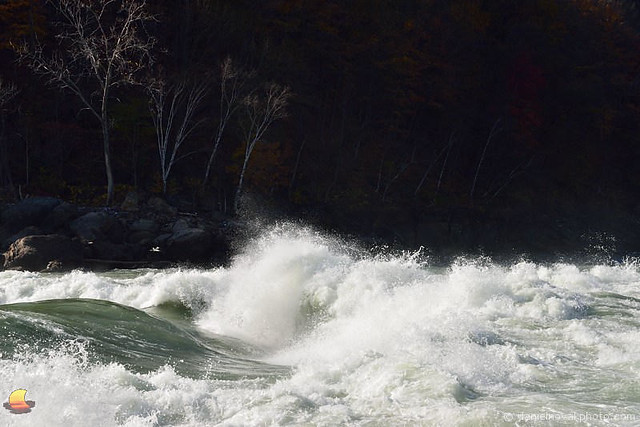 White Water of Lower Niagara River (DTD_0916)