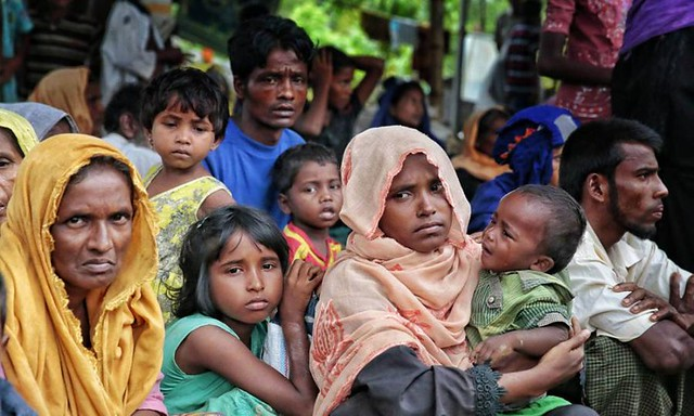 Gara-Gara Membela Nasib Rohingya, Diana Danielle Diserang Netizen