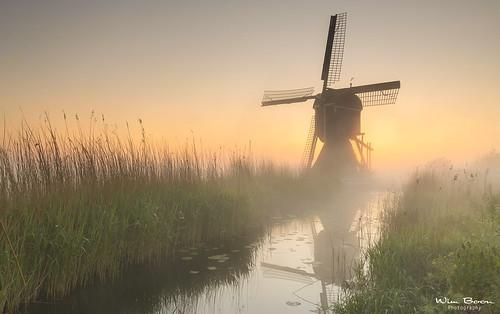canoneos5dmarkiii canonef1635mmf4lisusm donkselaagten holland nederland netherlands natuur nature earlymornings fog mist