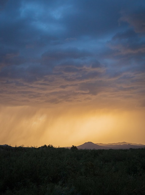 Monsoon season developing in New Mexico