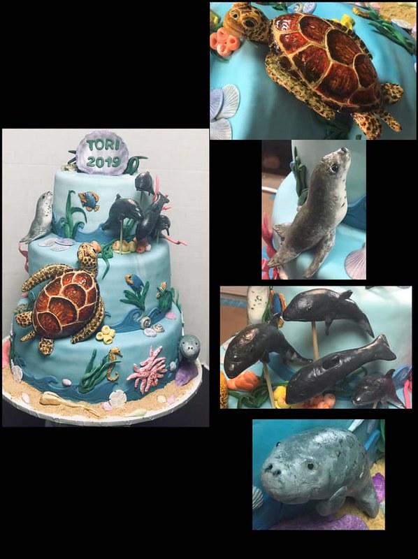 Cake by Eileen D'Aniello