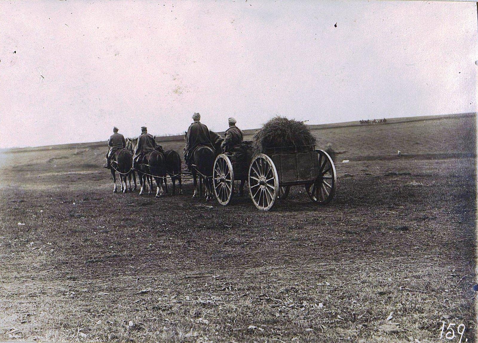 11. Зарядный ящик. На позицию. 1915